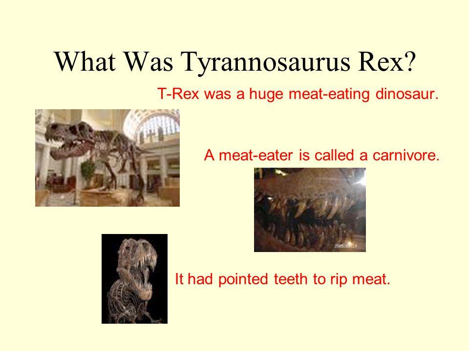 What Was Tyrannosaurus Rex