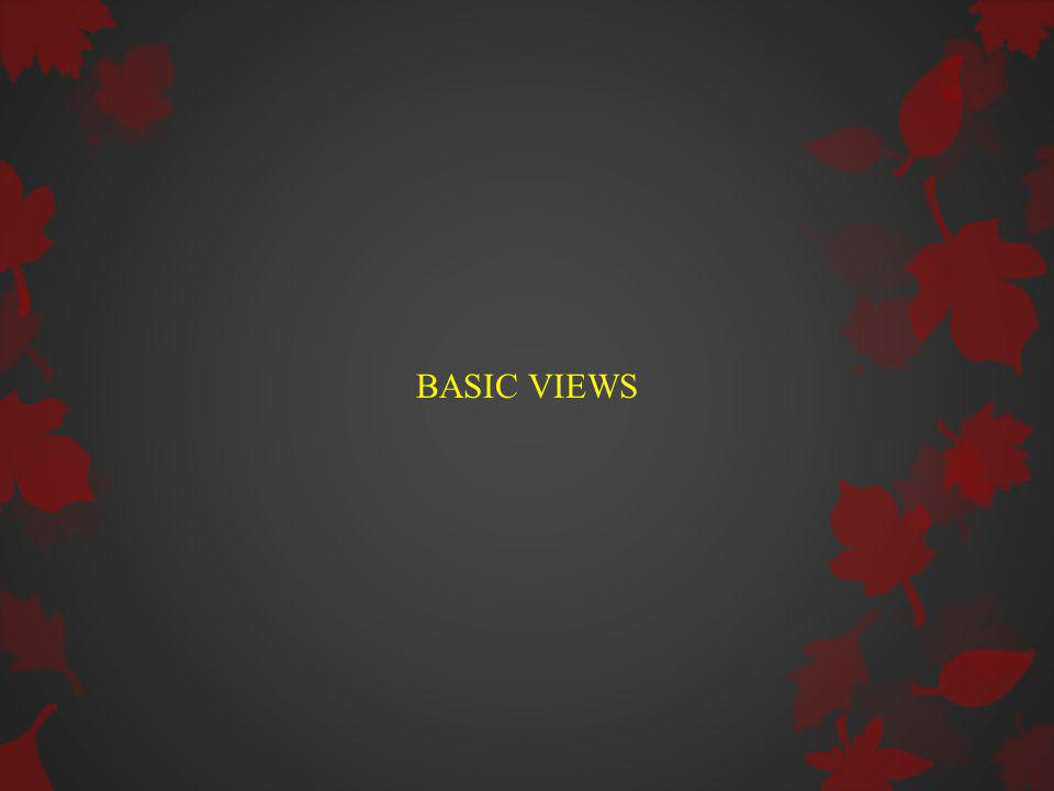 BASIC VIEWS