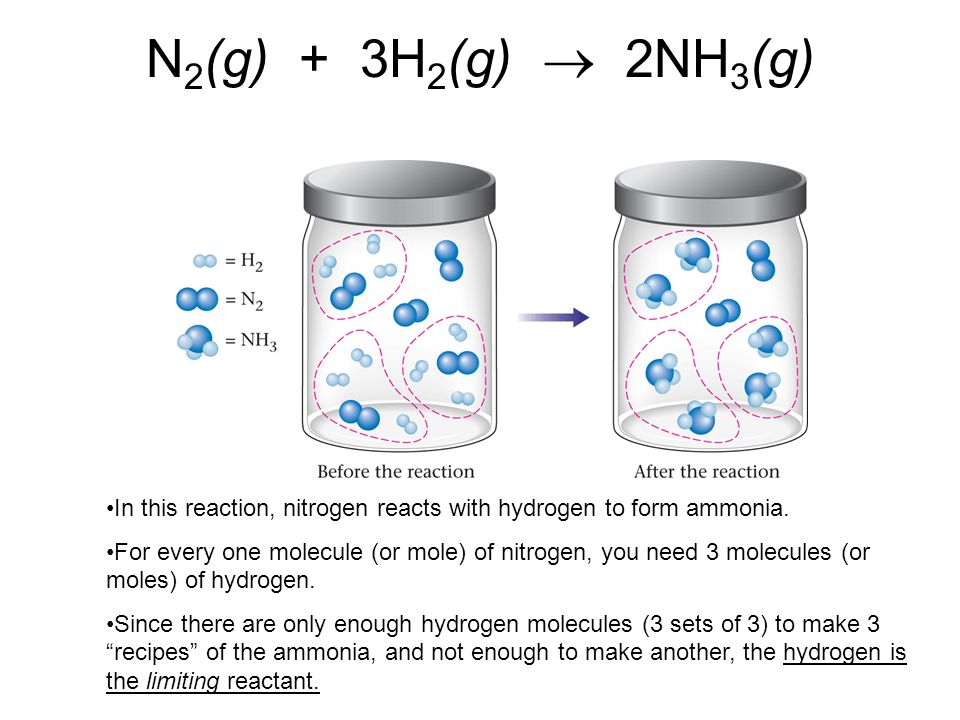N2(g) + 3H2(g)  2NH3(g) In this reaction, nitrogen reacts with hydrogen to form ammonia.