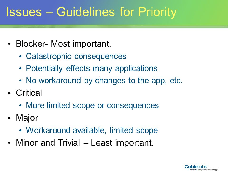 Issues – Guidelines for Priority