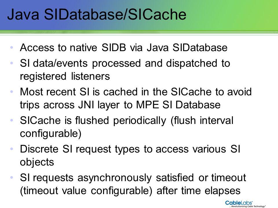 Java SIDatabase/SICache