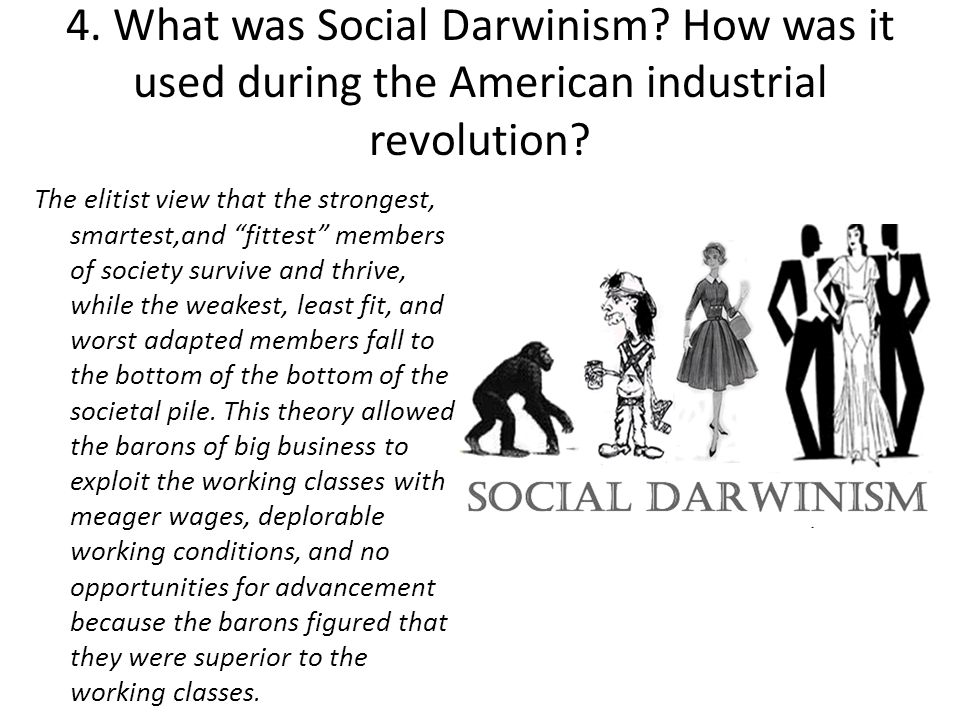 4. What was Social Darwinism