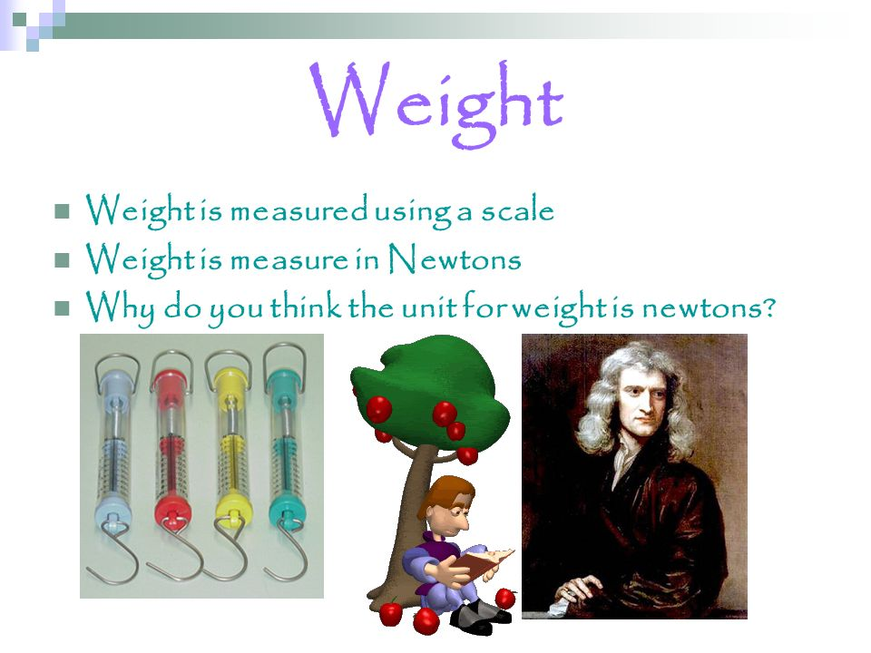 Weight Weight is measured using a scale Weight is measure in Newtons