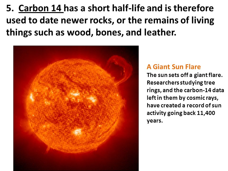 5. Carbon 14 has a short half-life and is therefore used to date newer rocks, or the remains of living things such as wood, bones, and leather.