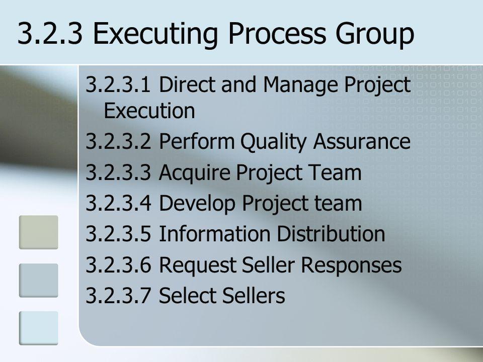 3.2.3 Executing Process Group