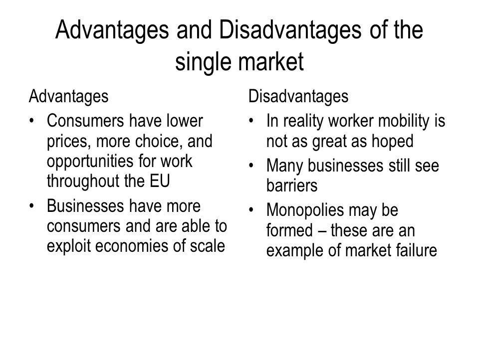 Advantages and Disadvantages of the single market