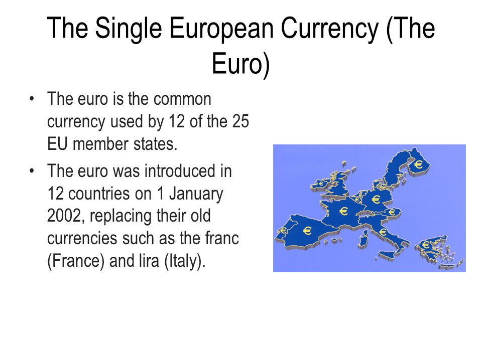 The Single European Currency (The Euro)