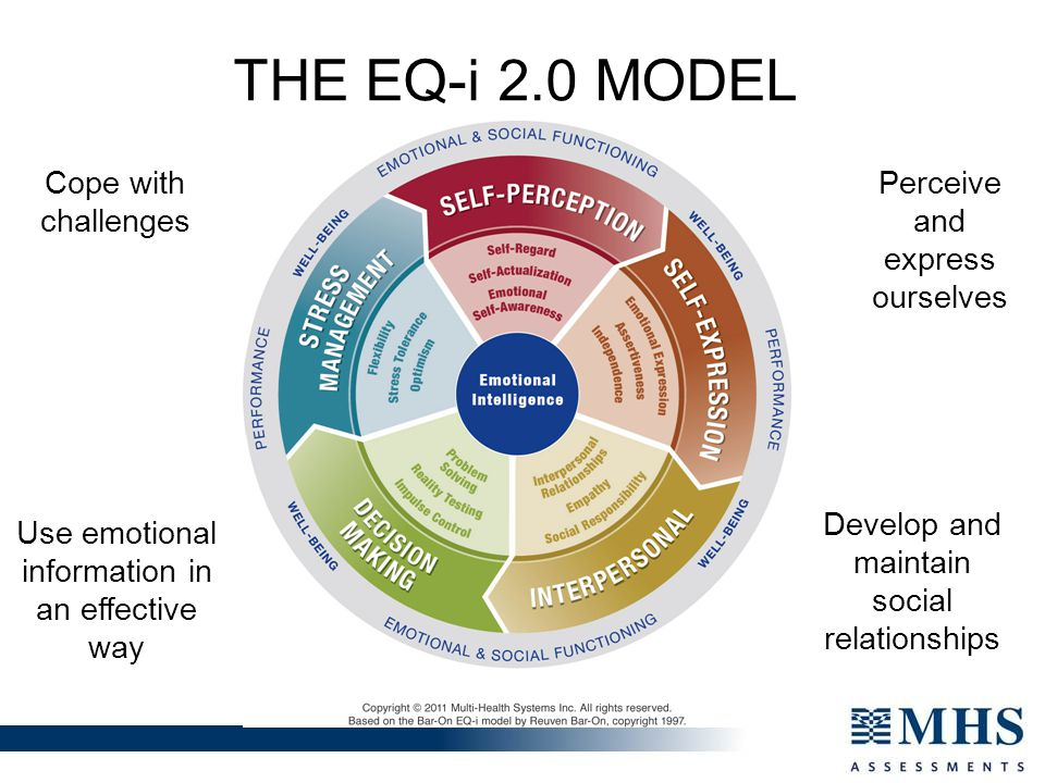 THE EQ-i 2.0 MODEL Cope with challenges Perceive and express ourselves