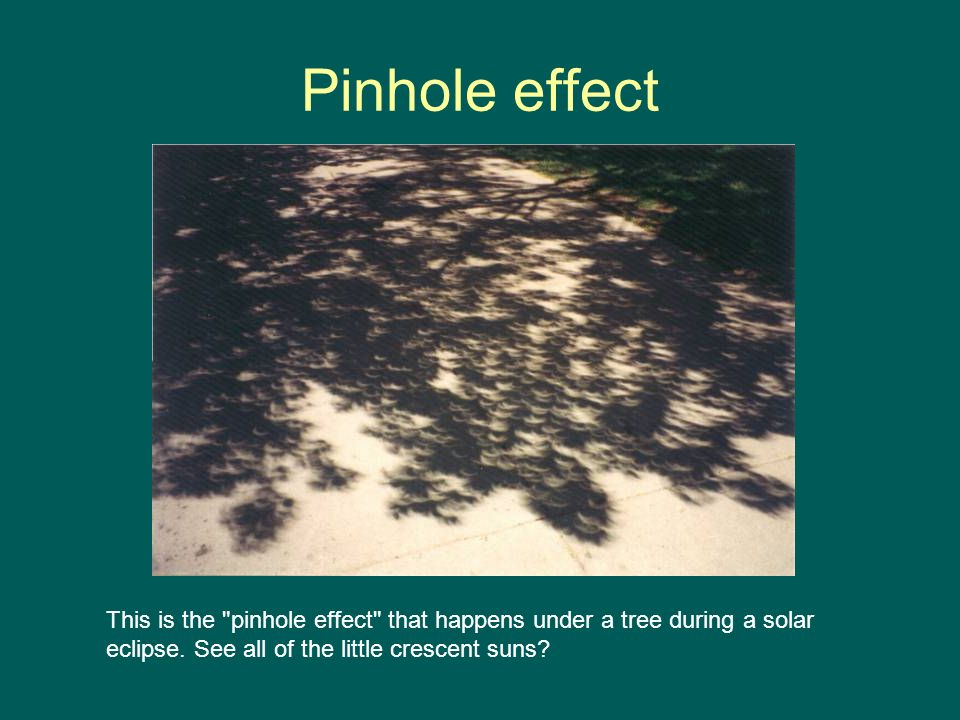 Pinhole effect This is the pinhole effect that happens under a tree during a solar eclipse.