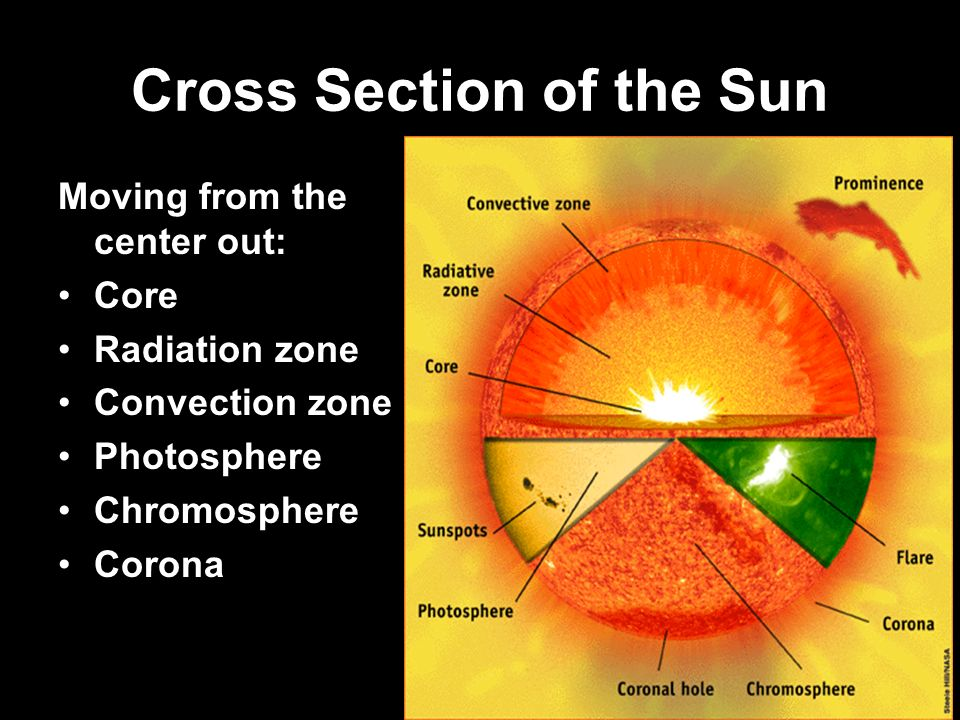 Cross Section of the Sun