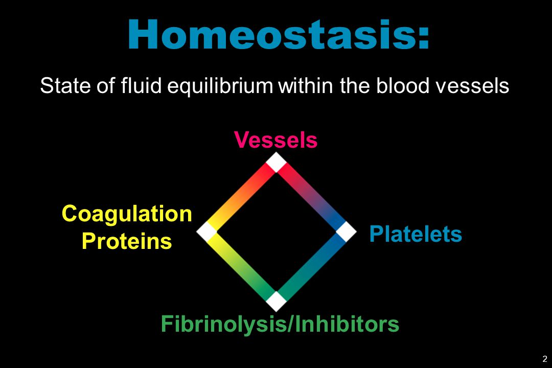 Homeostasis: Vessels Coagulation Proteins Platelets