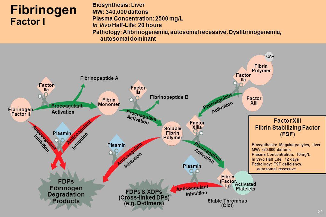 Fibrinogen Degradation Fibrin Stabilizing Factor (FSF)
