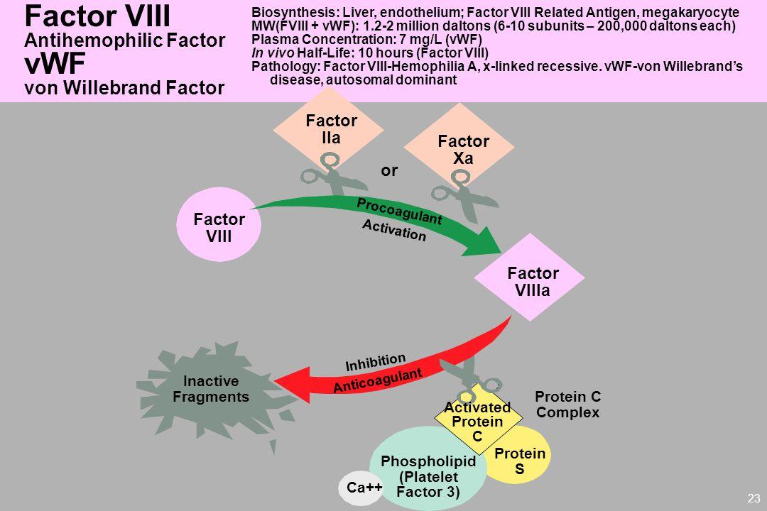 Factor VIII vWF Antihemophilic Factor von Willebrand Factor Factor IIa