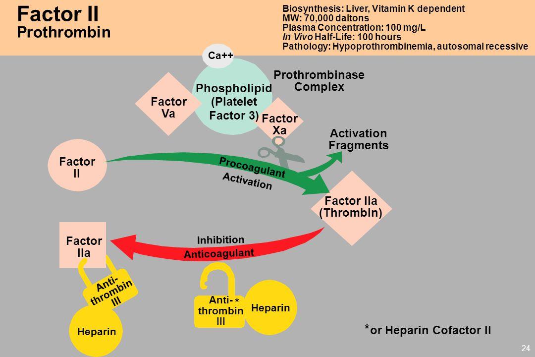 *or Heparin Cofactor II