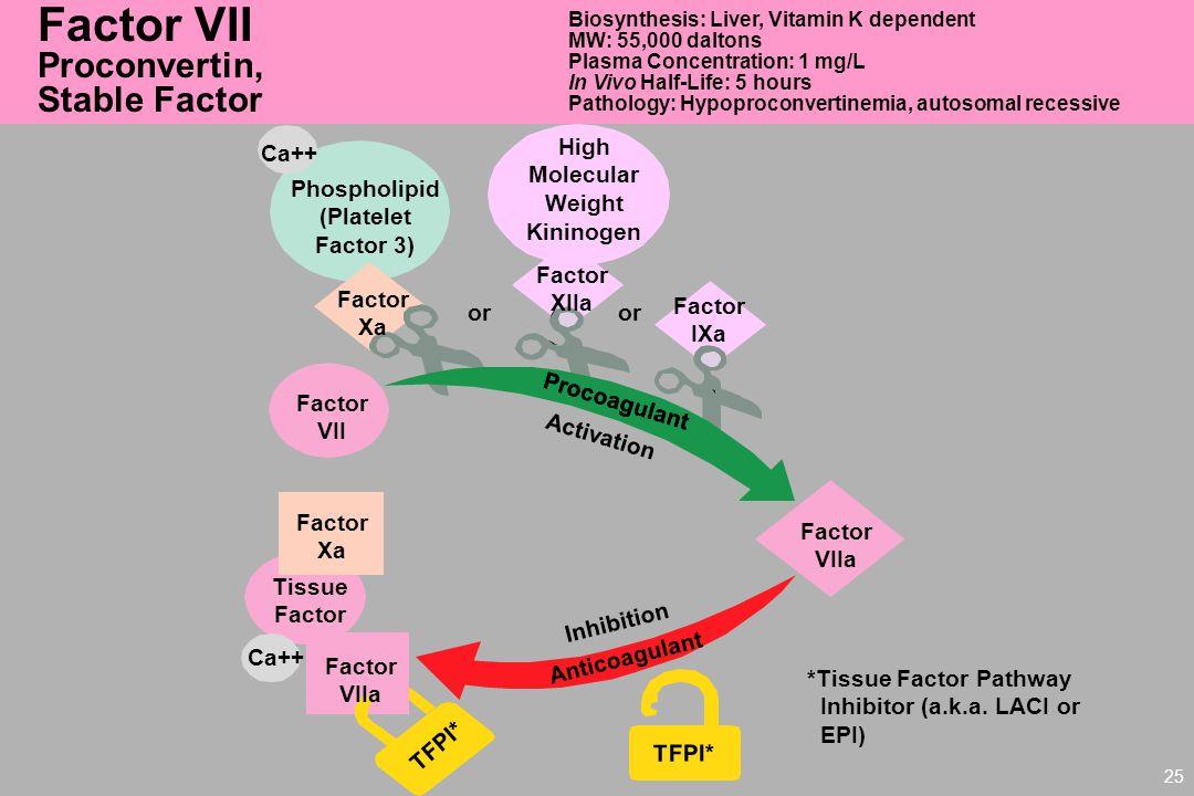 Factor VII Proconvertin, Stable Factor High Ca++ Molecular Weight