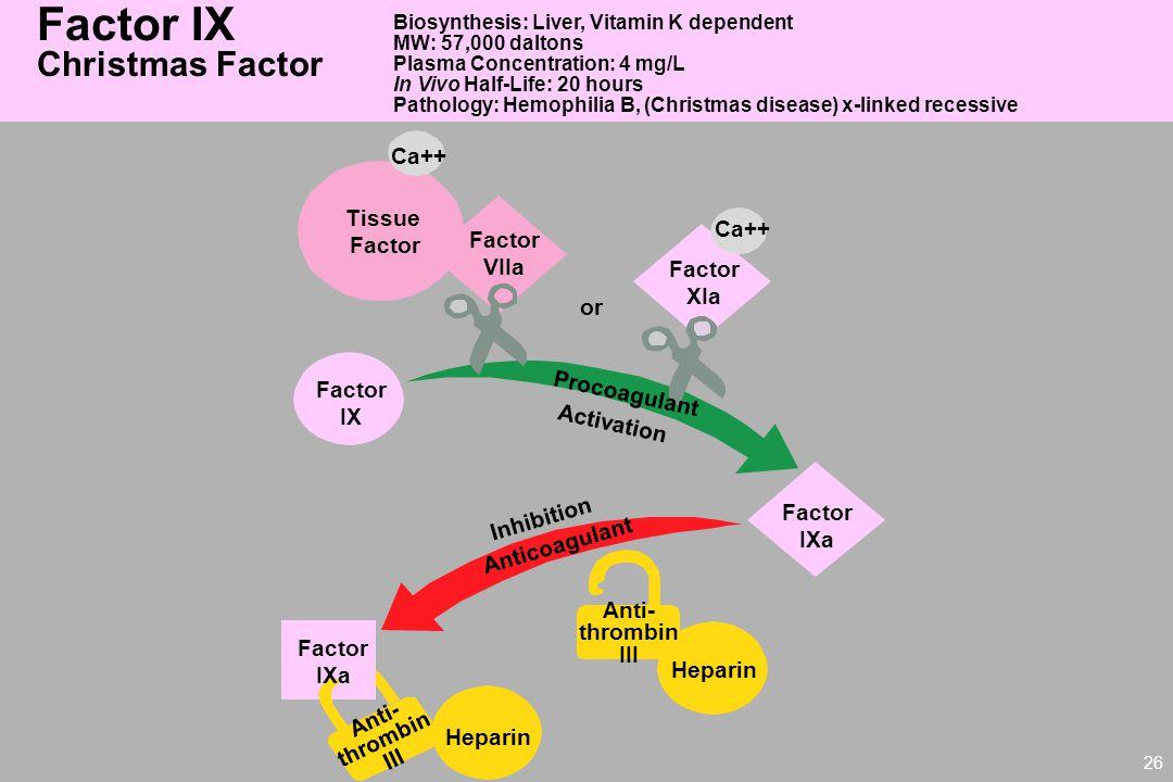 Factor IX Christmas Factor Ca++ Tissue Factor VIIa XIa or Procoagulant