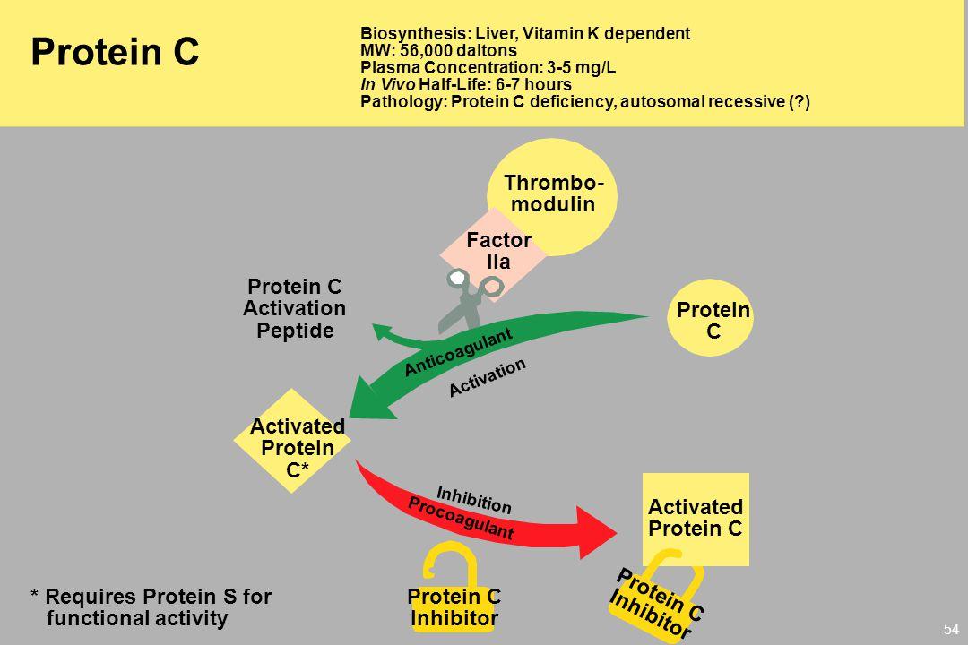 Protein C Thrombo- modulin Factor IIa Protein C Activation Peptide