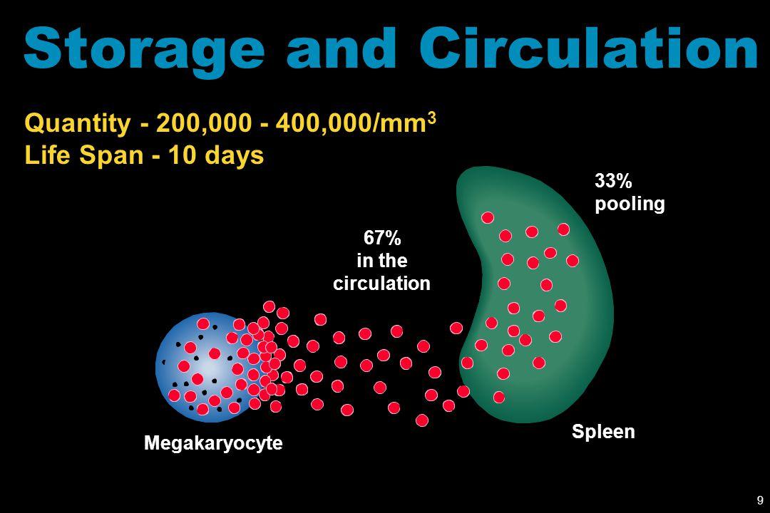 Storage and Circulation