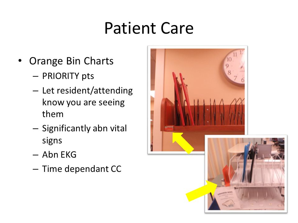 Patient Care Orange Bin Charts PRIORITY pts
