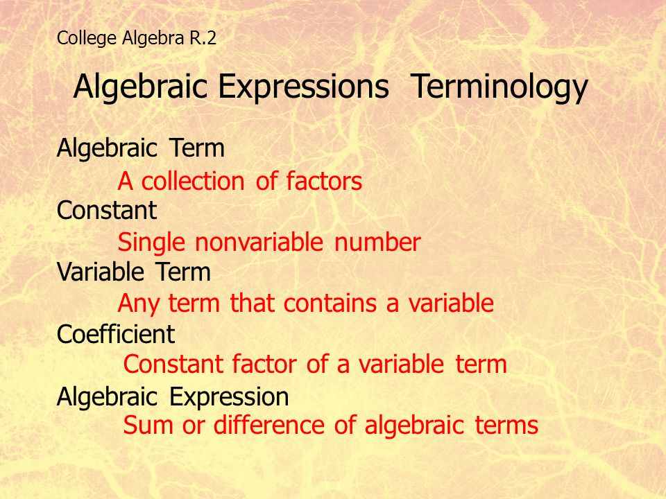 Algebraic Expressions Terminology