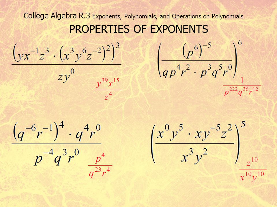 PROPERTIES OF EXPONENTS
