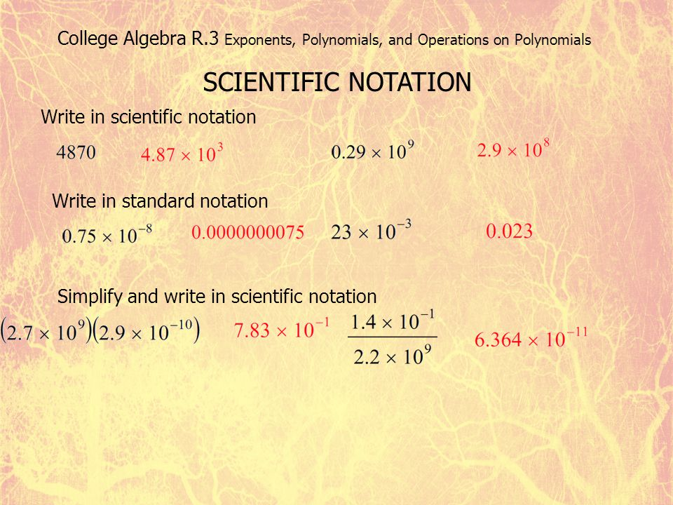 College Algebra R.3 Exponents, Polynomials, and Operations on Polynomials