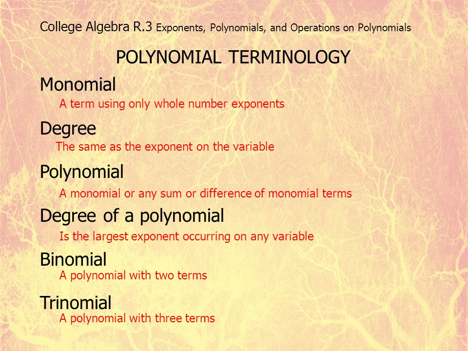 POLYNOMIAL TERMINOLOGY