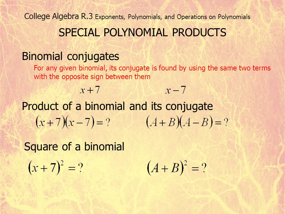 SPECIAL POLYNOMIAL PRODUCTS