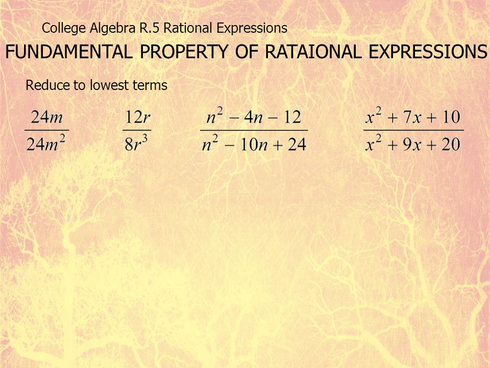 FUNDAMENTAL PROPERTY OF RATAIONAL EXPRESSIONS