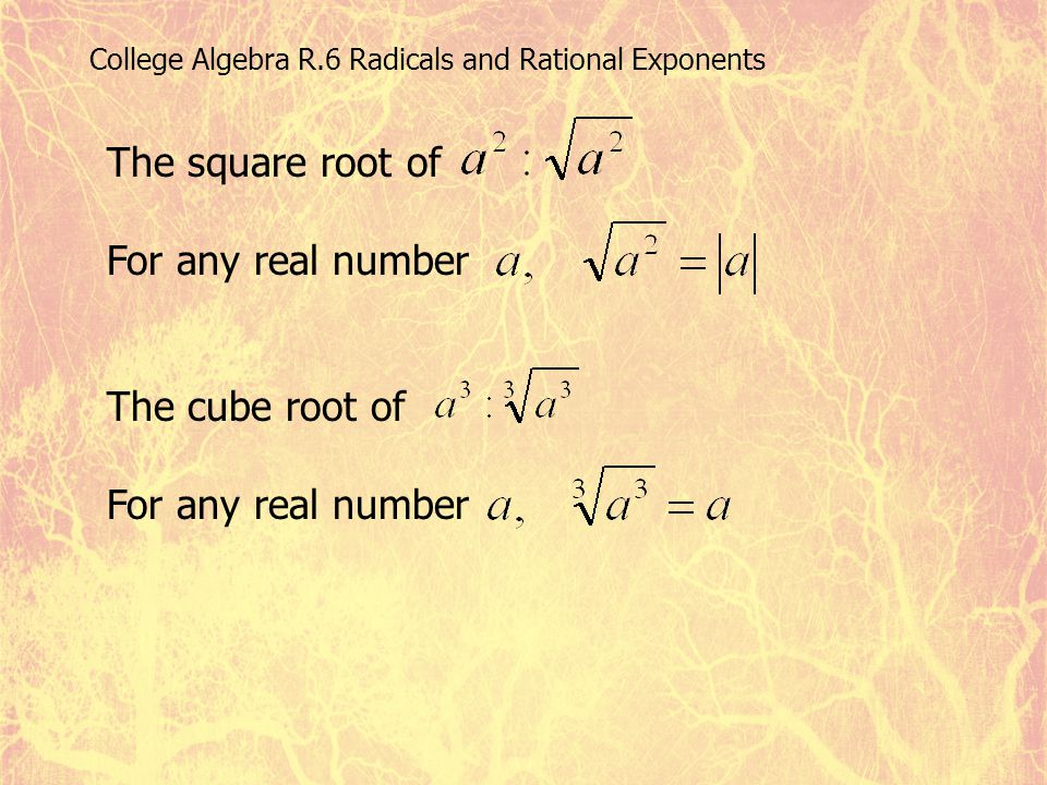 The square root of For any real number The cube root of