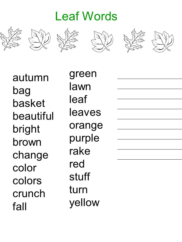 Leaf Words autumn green bag lawn basket leaf beautiful leaves bright
