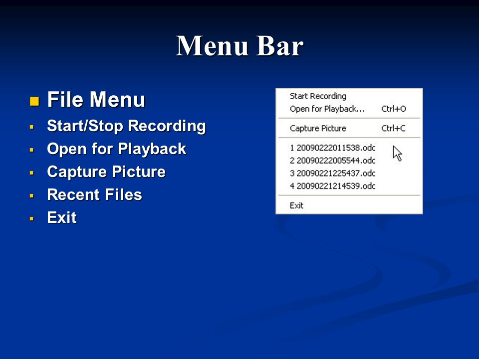 Menu Bar File Menu Start/Stop Recording Open for Playback