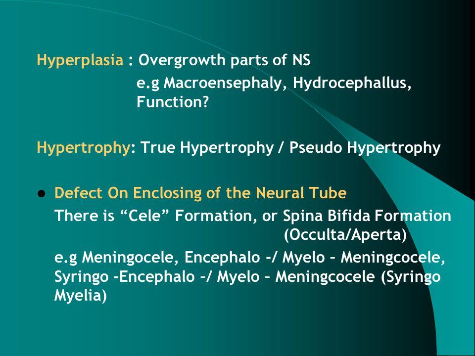 Hyperplasia : Overgrowth parts of NS