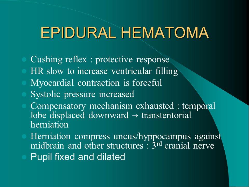 EPIDURAL HEMATOMA Cushing reflex : protective response