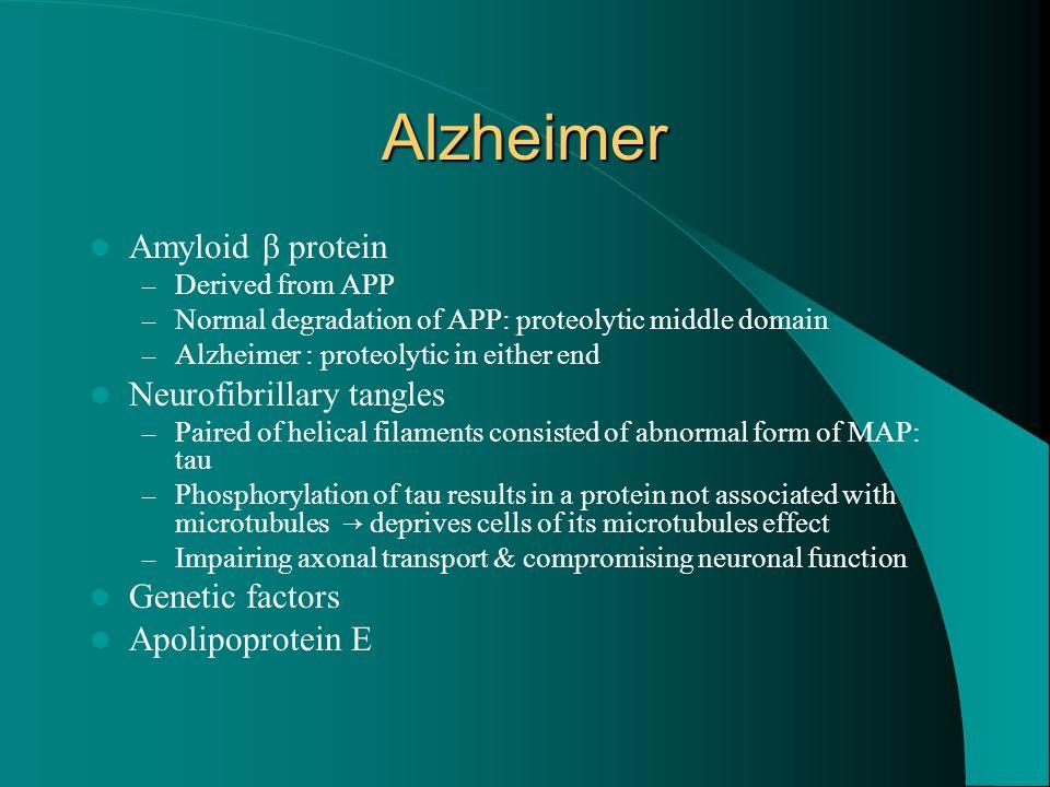 Alzheimer Amyloid β protein Neurofibrillary tangles Genetic factors