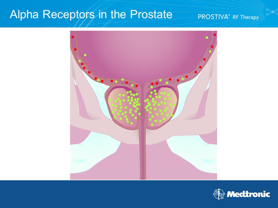 Alpha Receptors in the Prostate