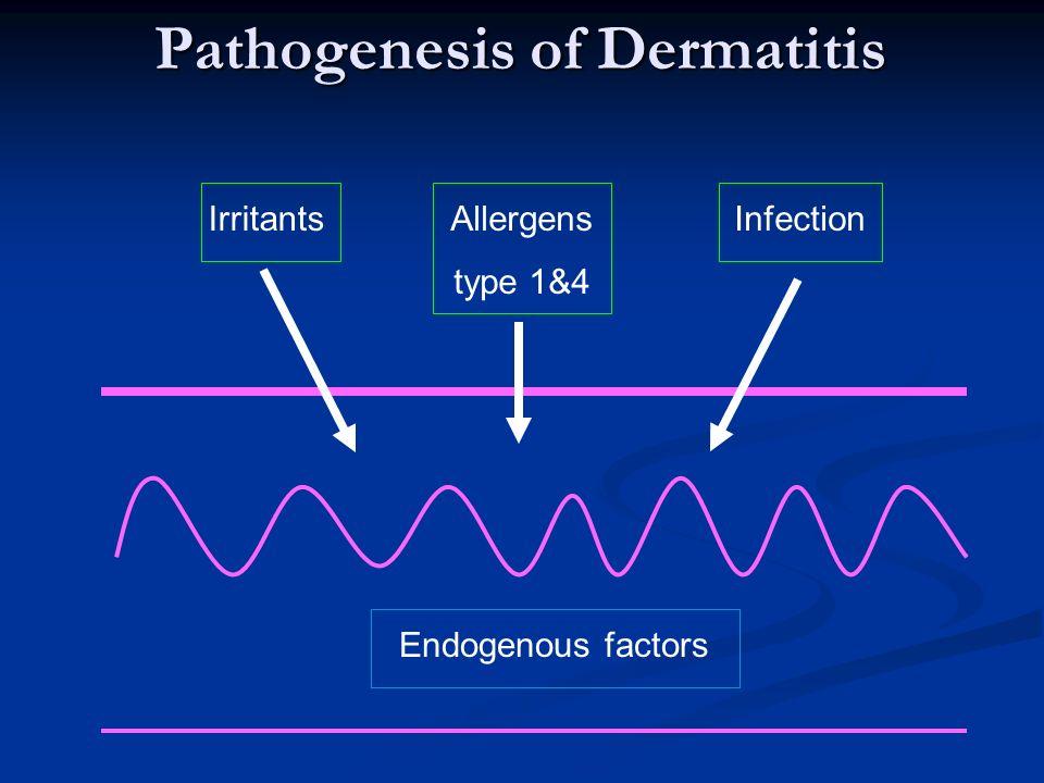 Pathogenesis of Dermatitis