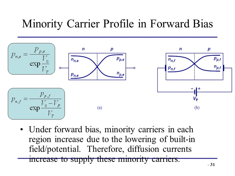 Minority Carrier Profile in Forward Bias