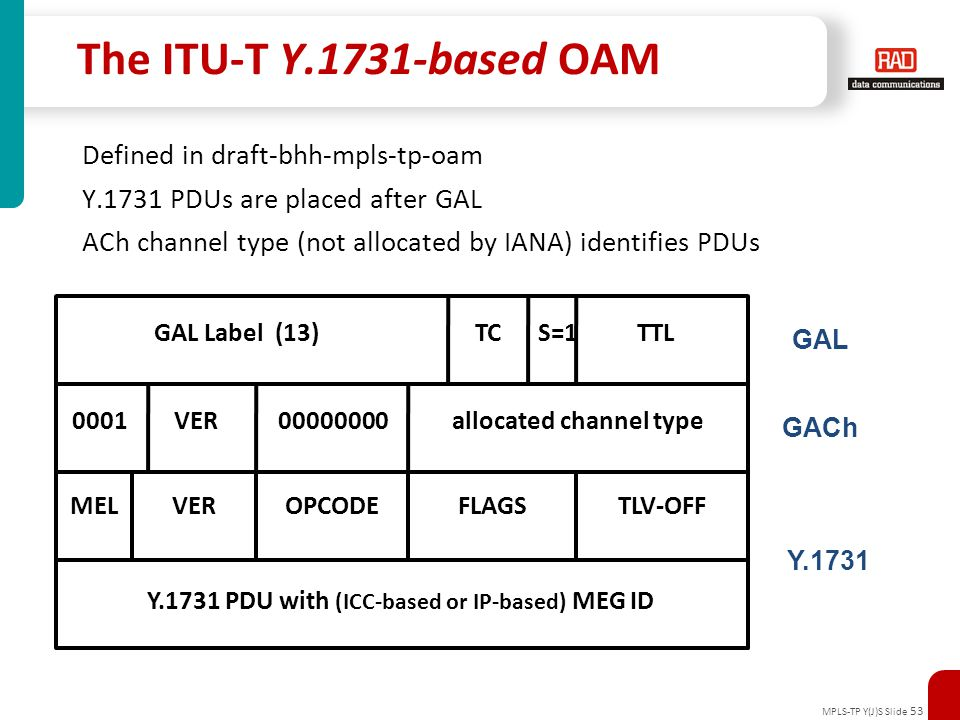 Y.1731 PDU with (ICC-based or IP-based) MEG ID