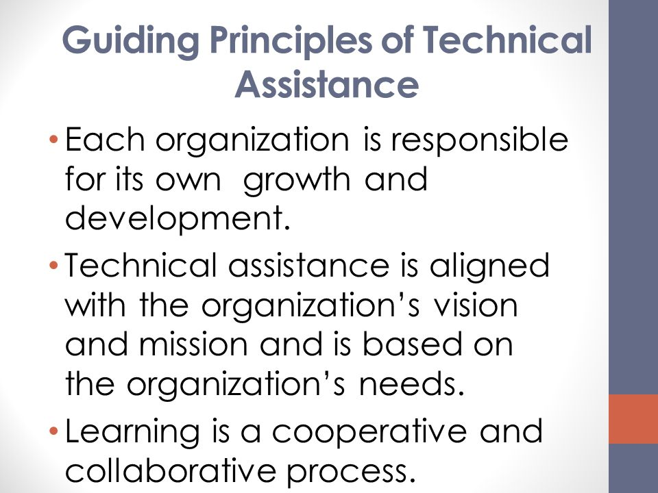 Guiding Principles of Technical Assistance
