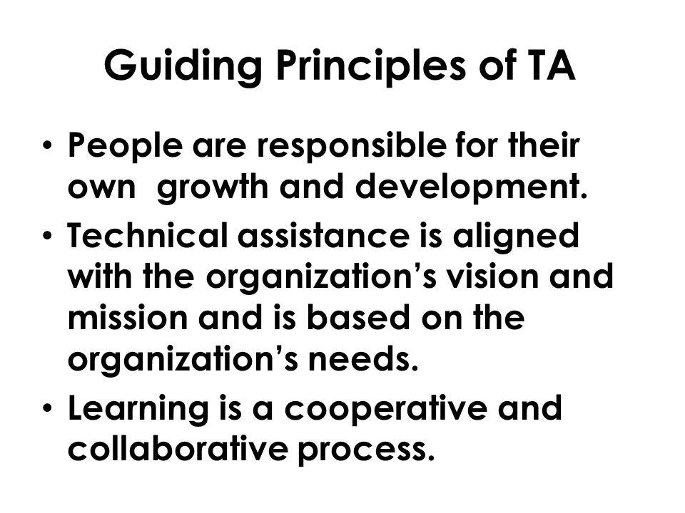 Guiding Principles of TA