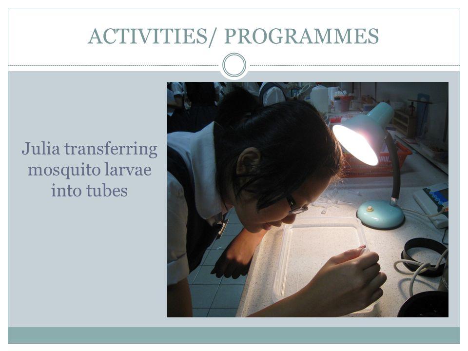ACTIVITIES/ PROGRAMMES