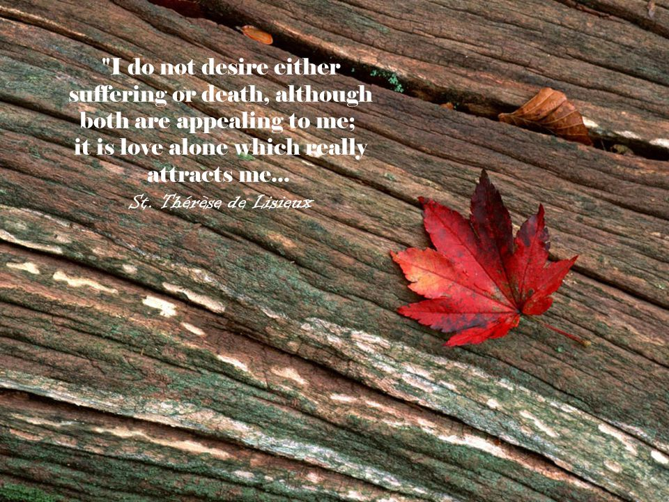 I do not desire either suffering or death, although both are appealing to me; it is love alone which really attracts me...