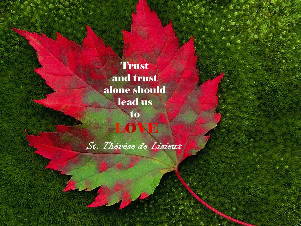 Trust and trust alone should lead us to LOVE St. Thérèse de Lisieux