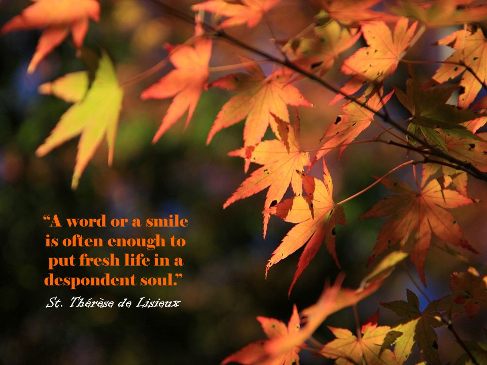 A word or a smile is often enough to put fresh life in a despondent soul.