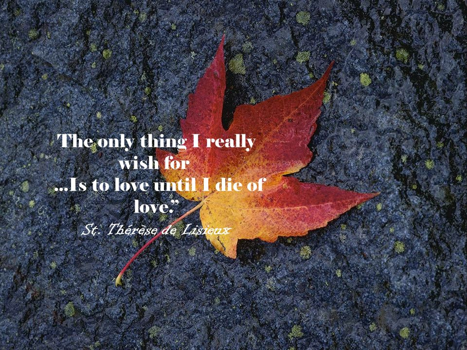 The only thing I really wish for ...Is to love until I die of love.