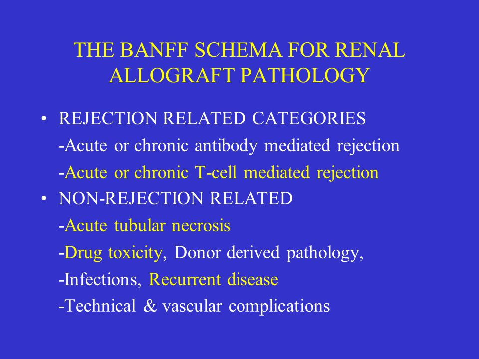 THE BANFF SCHEMA FOR RENAL ALLOGRAFT PATHOLOGY
