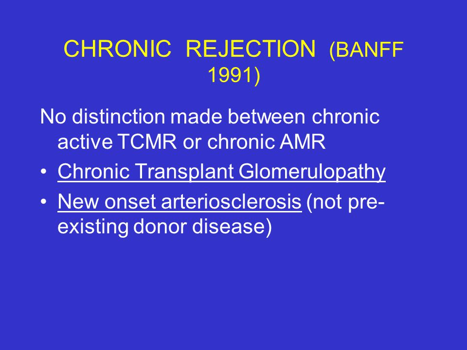 CHRONIC REJECTION (BANFF 1991)