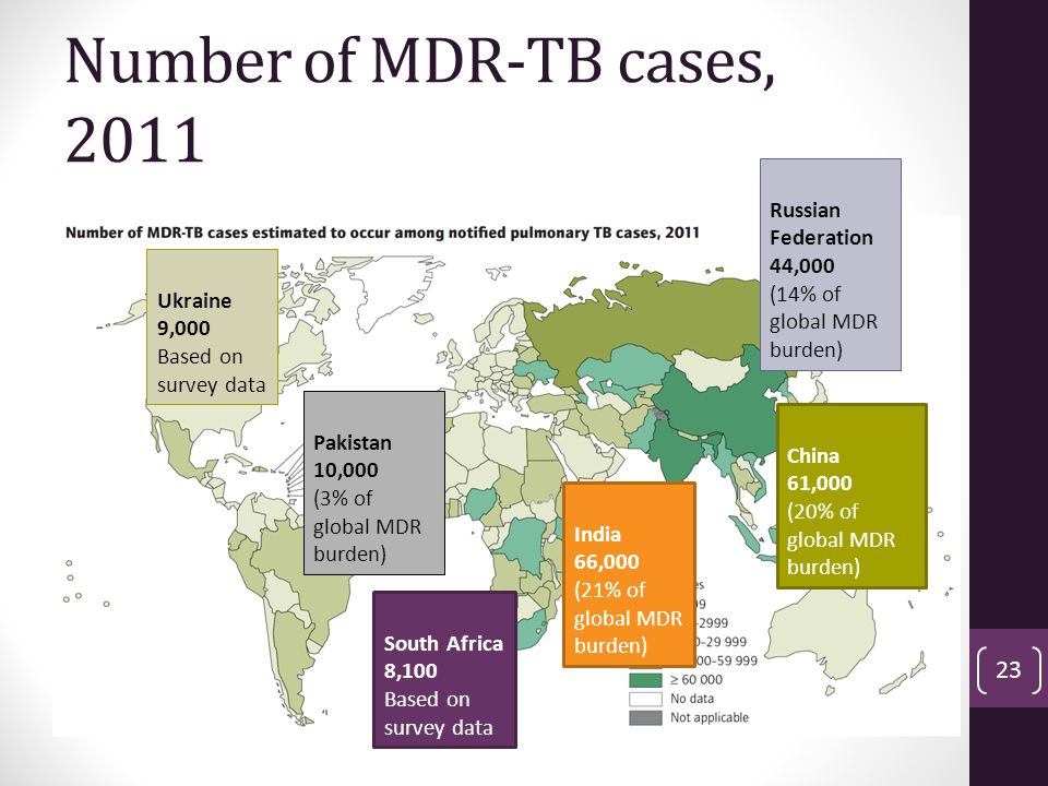 Number of MDR-TB cases, 2011 Russian Federation 44,000