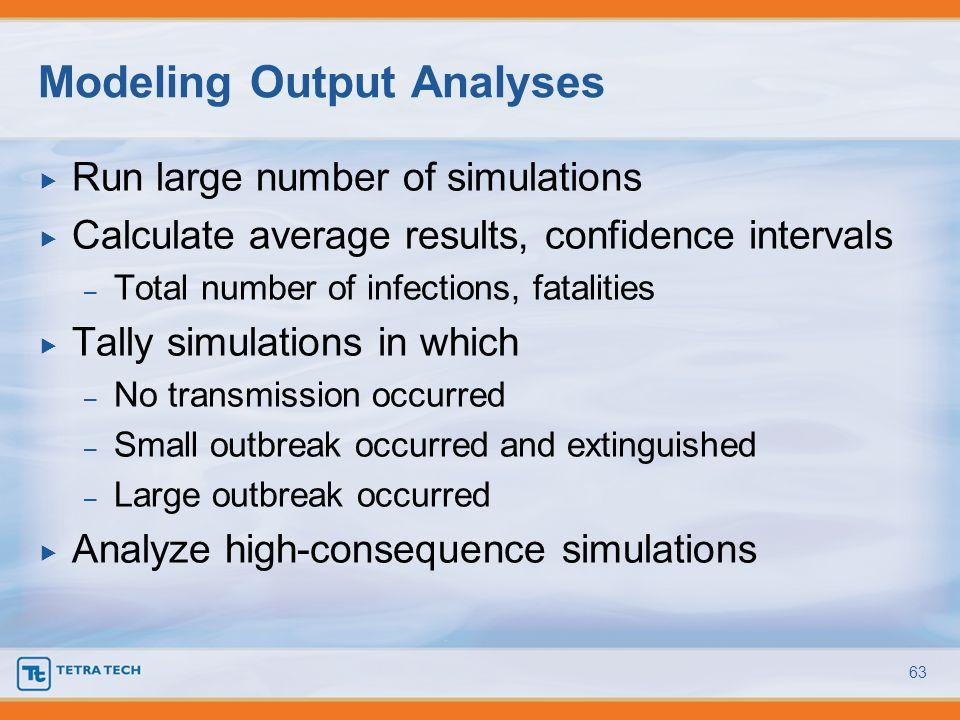 Modeling Output Analyses